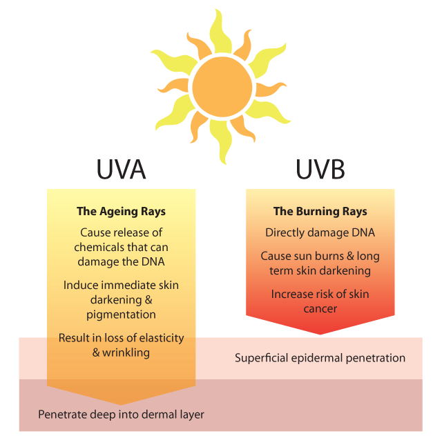 sun exposure and skin cancer The lasting effects of over exposure to the sun are being driven home this month ( june), as part of nhs england's cover up, mate campaign.